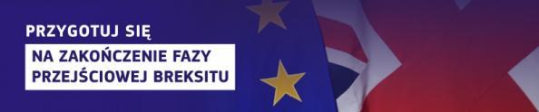web banner background brexit pl